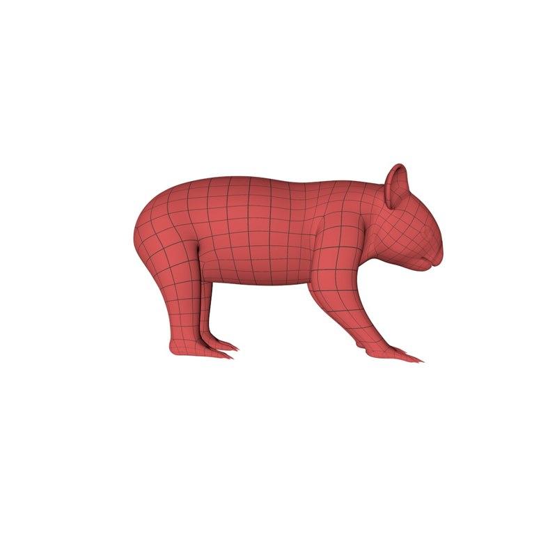 base mesh koala bear fbx