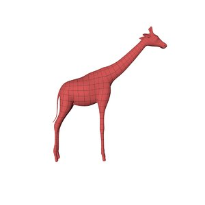 3d base mesh giraffe model