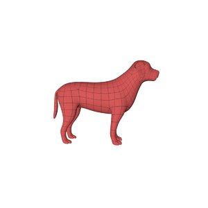 3d base mesh labrador dog model