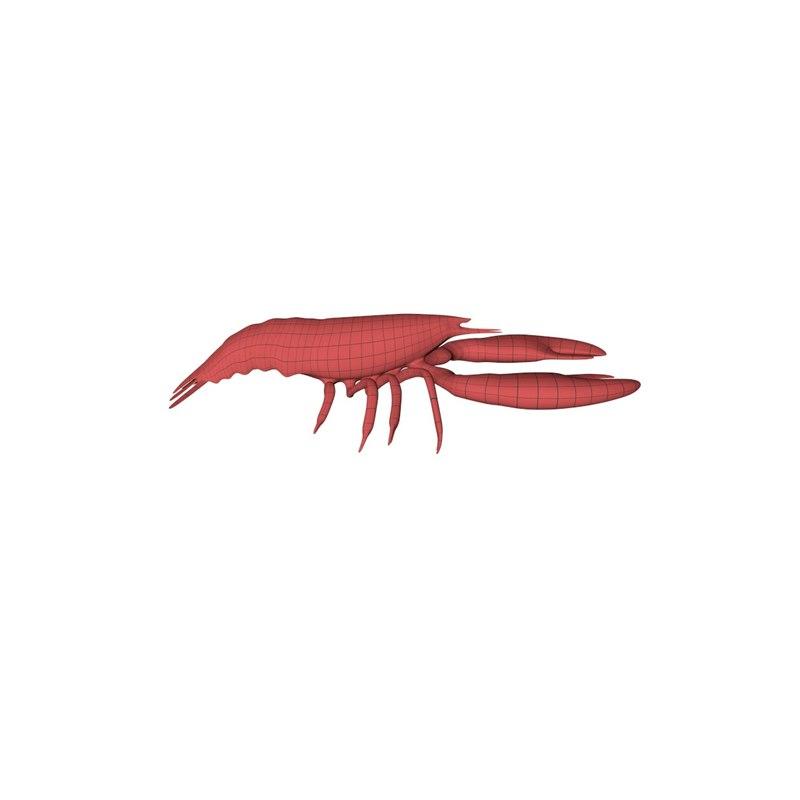 3d base mesh lobster model