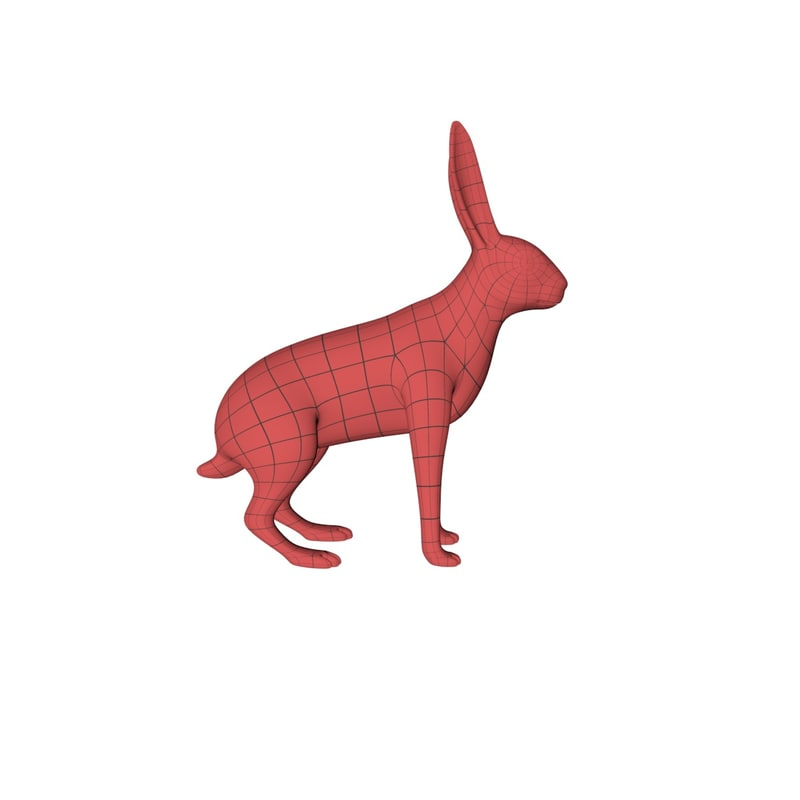 wild rabbit base mesh 3d c4d