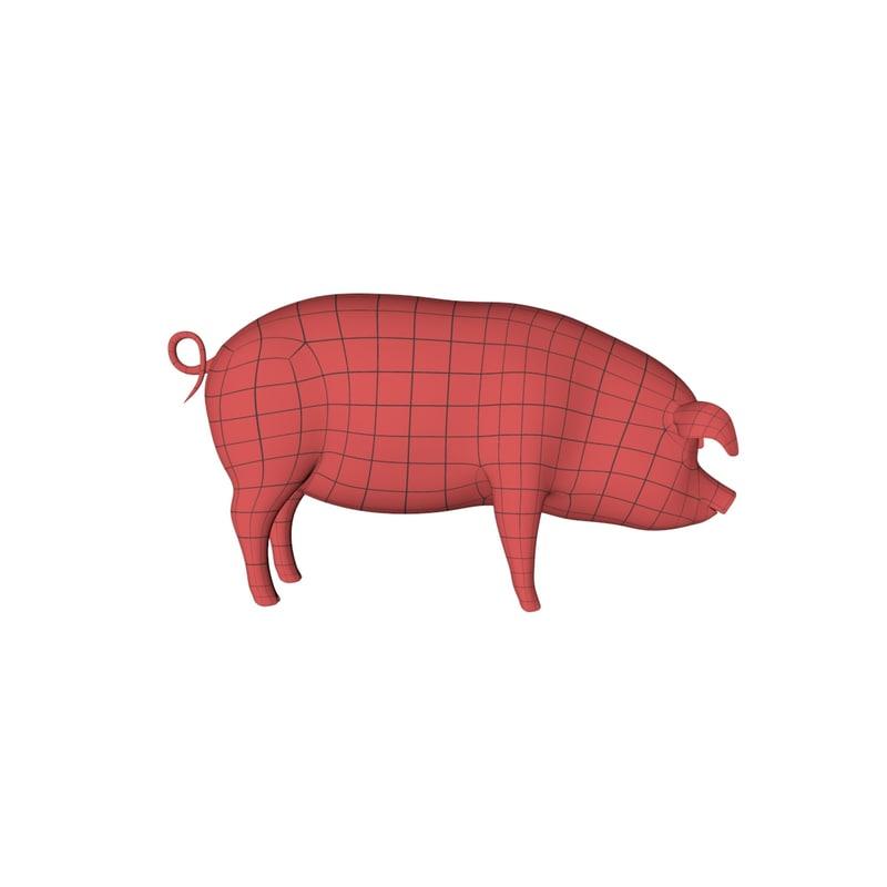 3d model base mesh pig
