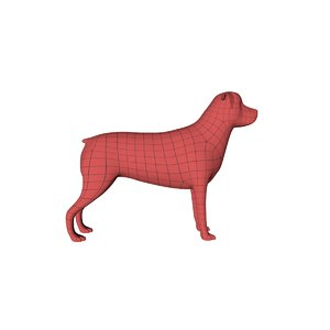 3d base mesh rottweiler dog model