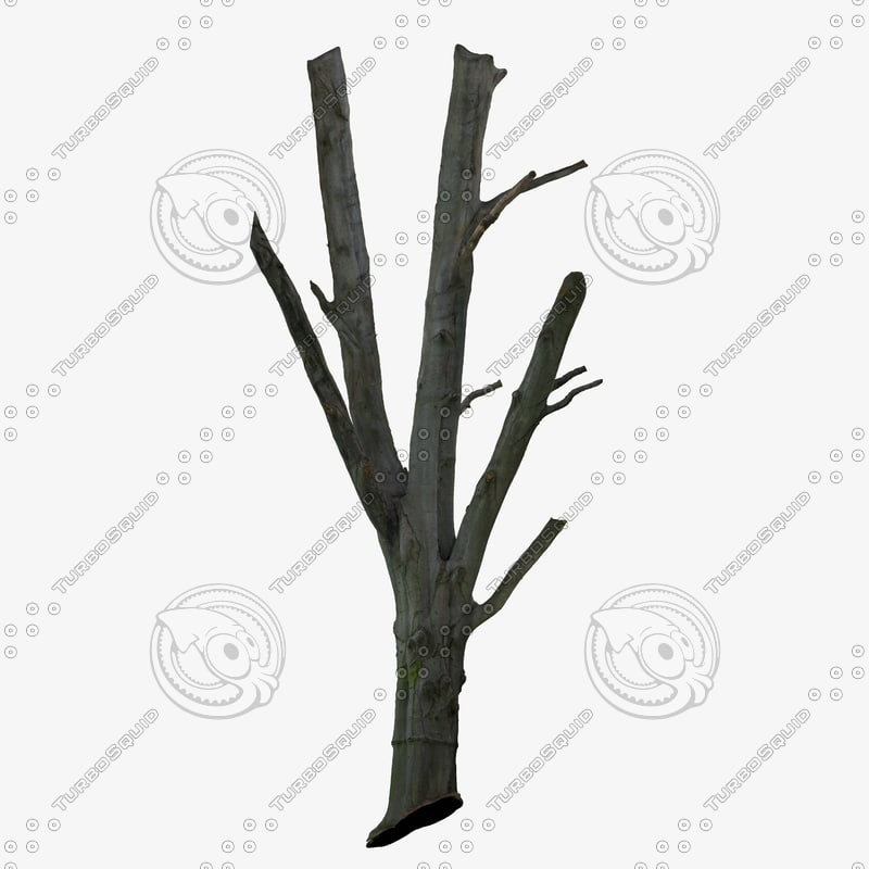 3d tree trunk scanned cleaned model