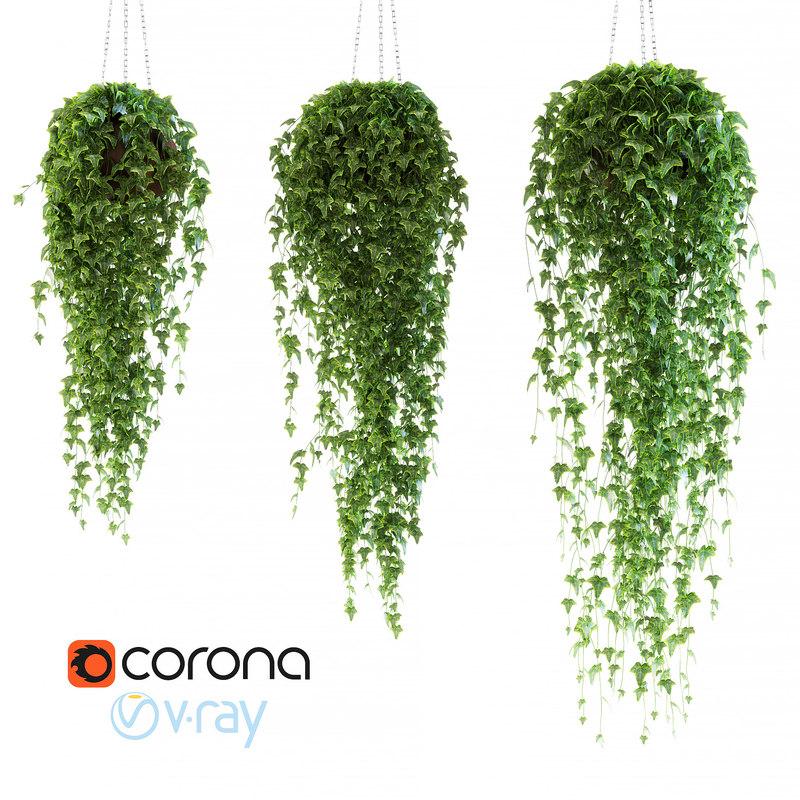 ivy chain pot 3d max