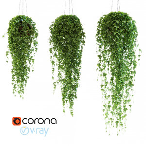 ivy chain pot 3d max