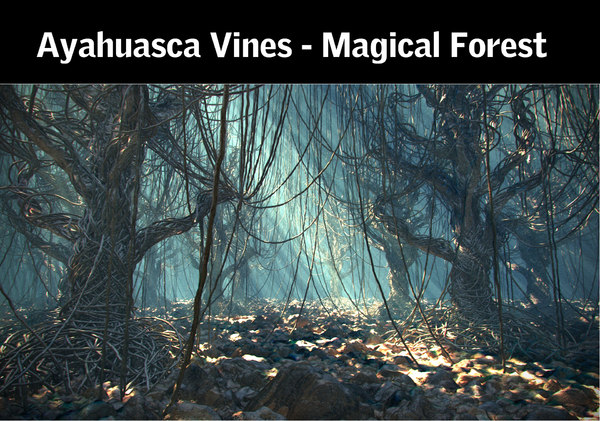 ayahuasca vines - magical 3d model