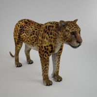 Leopard Low Poly