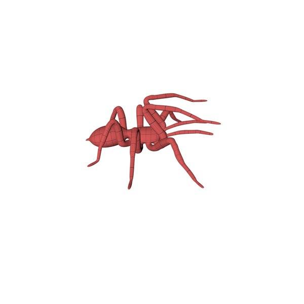 base mesh spider 3d model