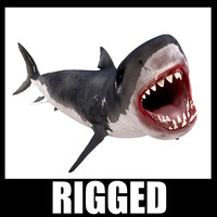 White Shark Rigged