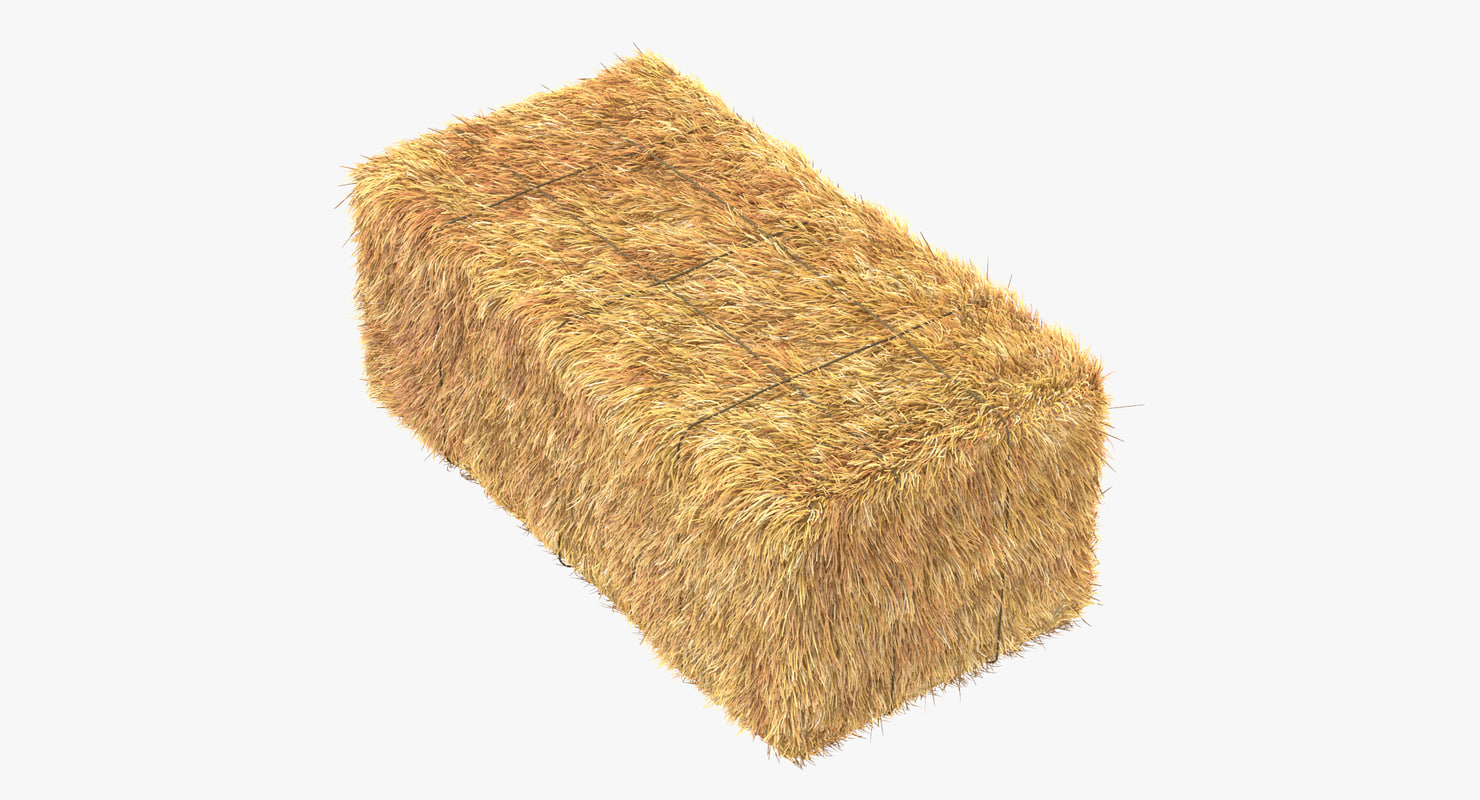 hay bale square 3d max