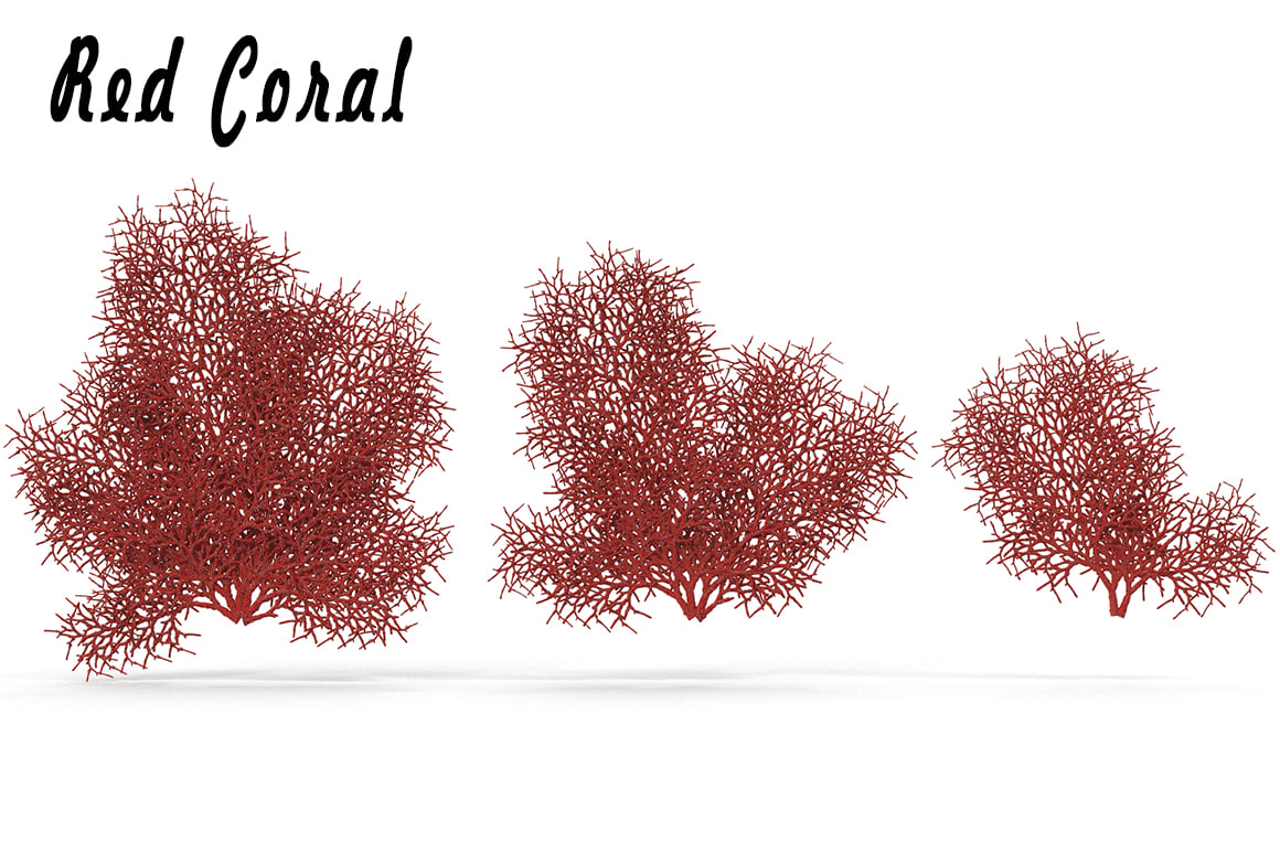 sea corals red 3d fbx