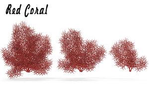 sea corals red 3d fbx