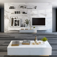 Partition wall with TV
