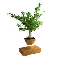 levitating plants 3d obj