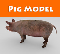 pig low poly game ready model
