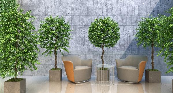 2 plant tree fbx