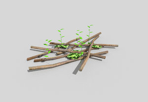 forest decoration 3d model