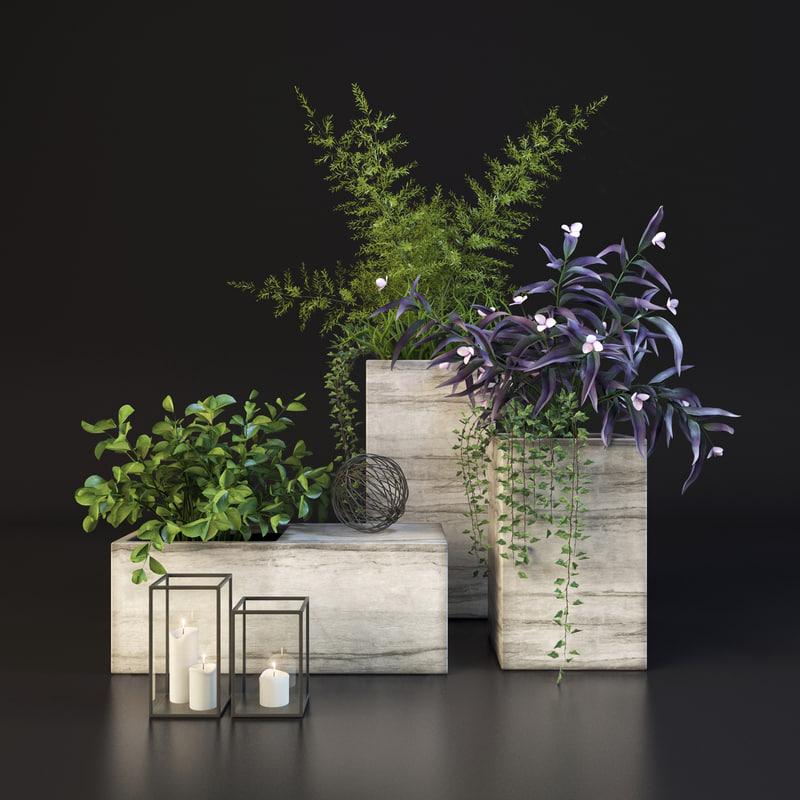 decorative set plants 3d max