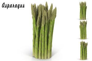asparagus 3d max