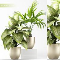 plants 91 obj