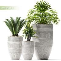 max plants 92