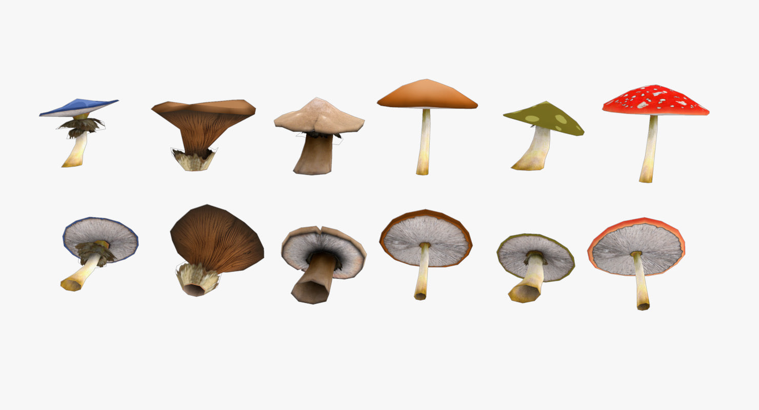 mushrooms 3d c4d