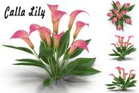obj calla lily