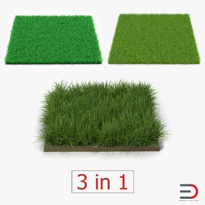 3d grass fields 2 model