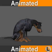 dog animation max