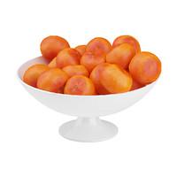 3d model tangerines bowl