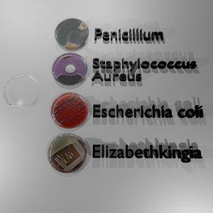 petri dishes bacteria 3d obj