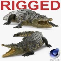 crocodile rigged 3d c4d