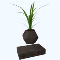 3d levitating plants wild onions