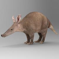 Aardvark Orycteropus afer