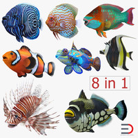 Coral Fishs Collection 2