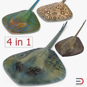 stingray spotted blue 3d obj