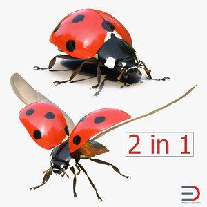 ladybug rigged animate 3d model
