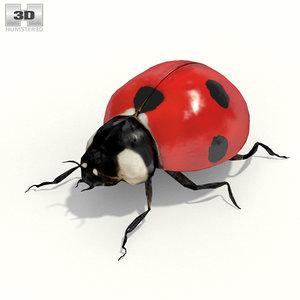 3d model ladybird lady d