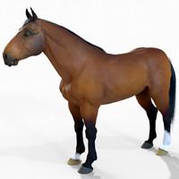 3d model horse fur