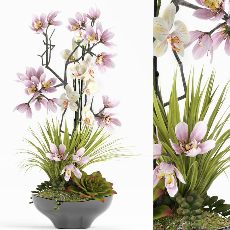 3d model flower set 21