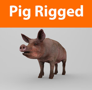pig rigged 3d obj
