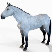 horse fur 3d model