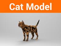 3d cat ready model