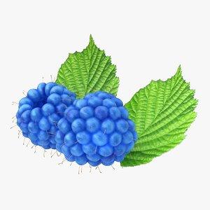 realistic raspberry blue 3d 3ds