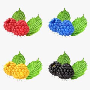 3d realistic raspberry set