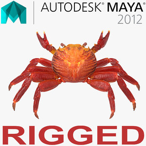 red rock crab rigged 3d ma