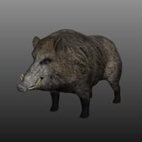 boar low poly