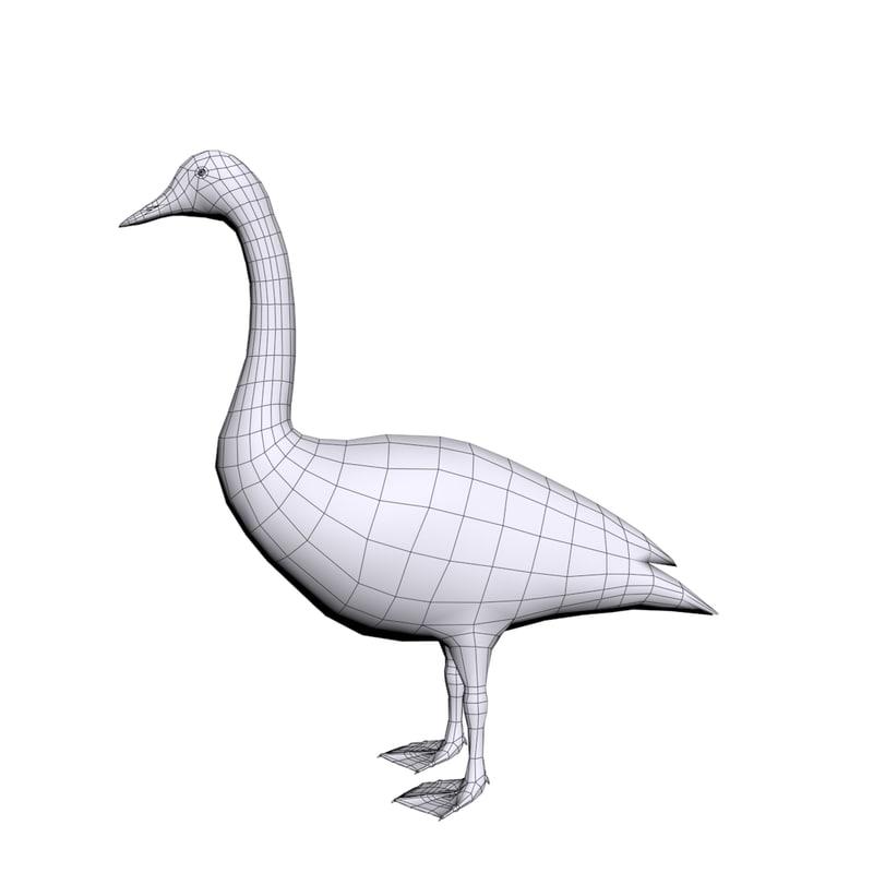 swan max
