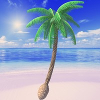 beach palm tree 3d max